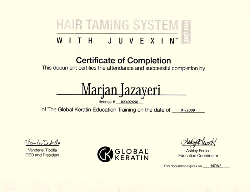 Hair Taming System